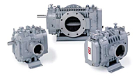 DuroFlow® Industrial Series Positive Displacement Blowers with Vacuum Pump - 7