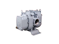 DuroFlow® Industrial 30 Series Model 3004 Positive Displacement Blower with Vacuum Pump - 3